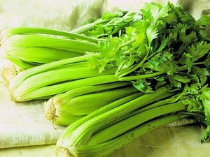 Сельдерей едят сырым. Как правильно есть сельдерей, чтобы похудеть. Употребление корневого вида.