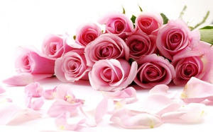 Как заставить распуститься срезанный бутон розы