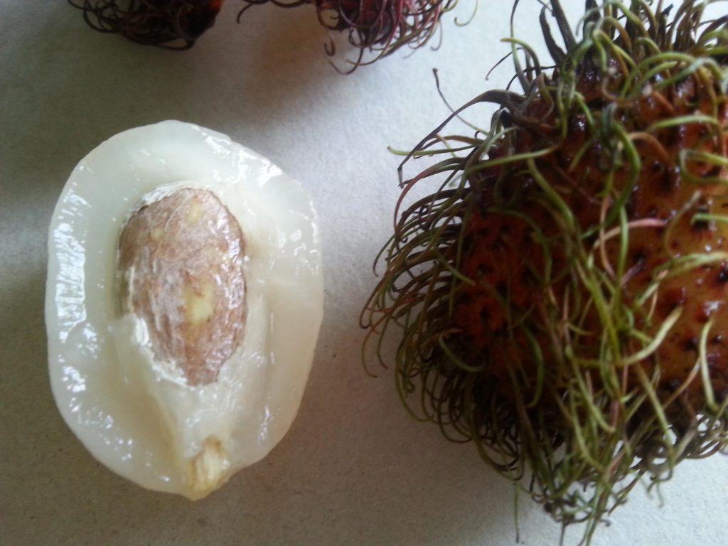 Извлечение косточки из плода рамбутана