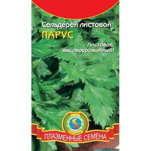 Рекомендации для выбора семян листового и черешкового сельдерея