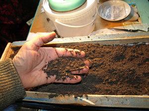 Рекомендации как лучше сеять семена перца на рассаду