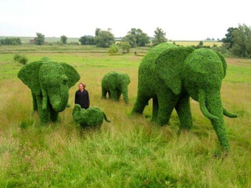 Скульптуры слонов из самшита