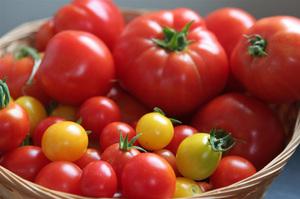 Выбор сорта помидоров зависит только от ваших предпочтений.